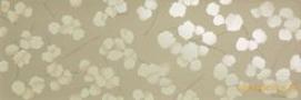 Miss fap mimosa deserto inserto fap ceramiche декор