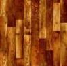Линолеум:Алекс-3:519-1