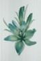 Акварель / Akvarel Керамическая плитка Акварель зеленый декор