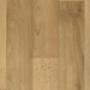 Линолеум Спринт Сарах 00 Синтерос (Tarkett) 3,5 м